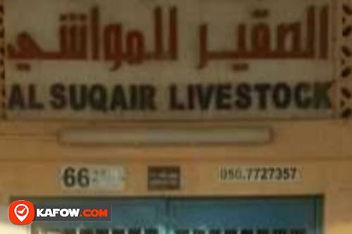 Al Suqair livestock
