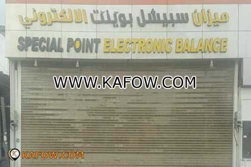 Special Point Electronic Balance