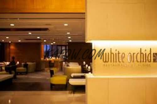 White Orchid Restaurant And Lounge